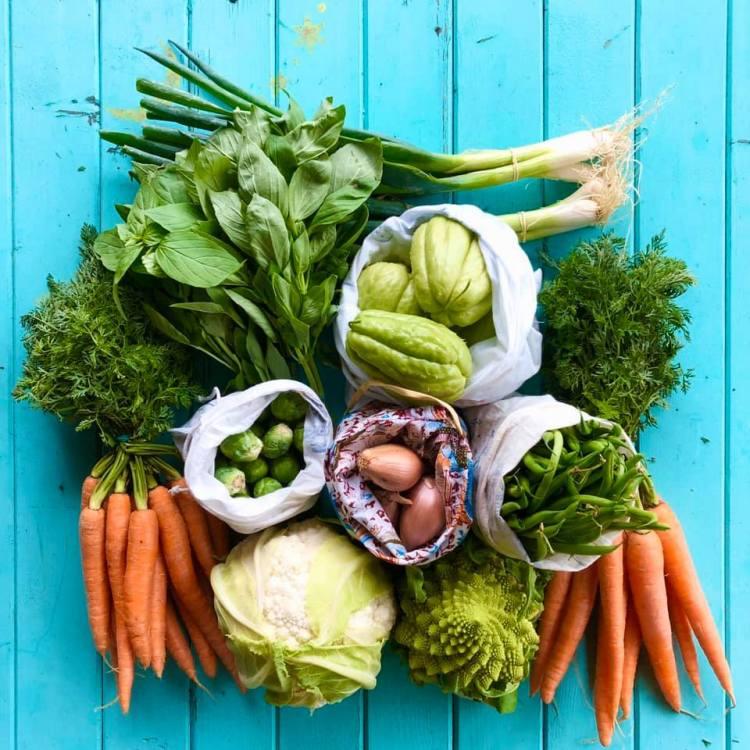 Sur un fond bleu, des légumes de toutes les couleurs dont certains dans des sacs en vrac